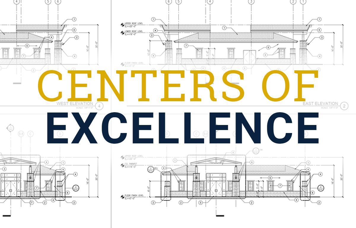 The Centers of Excellence image