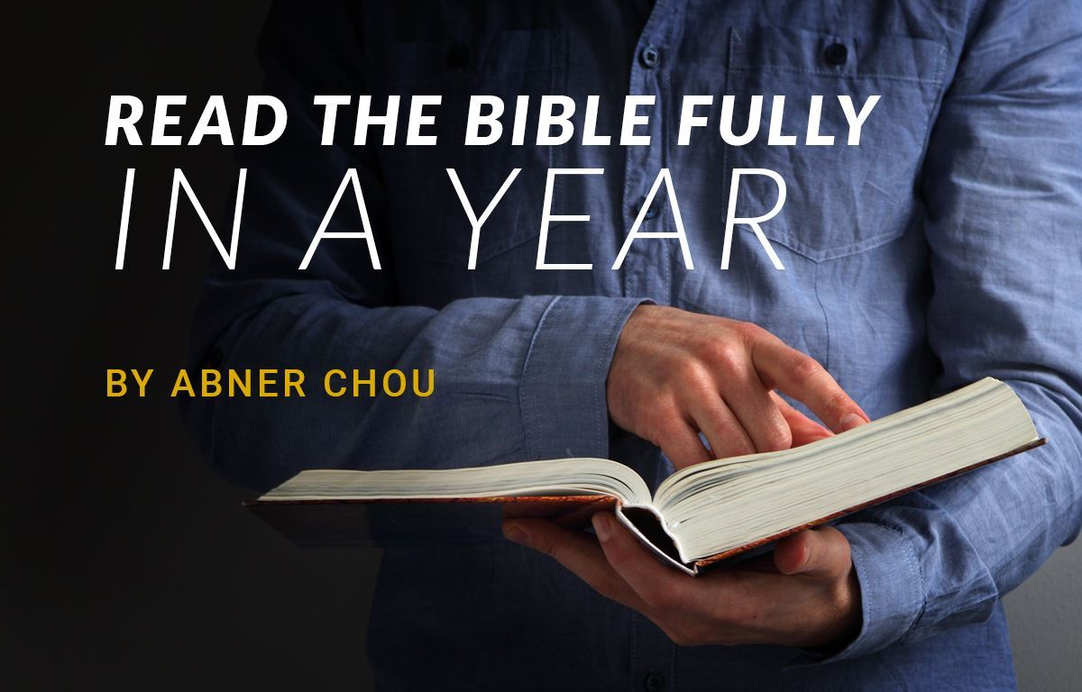 Reading the Bible Fully in a Year image